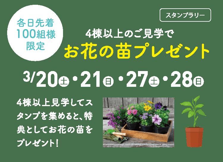 お花の苗プレゼント